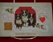 Antique Postcard, Valentine Postcard, Holiday Postcards, 1910s, Vintage Postcard, Dog Postcard, Dog Valentine, Embossed Postcard, Epsteam