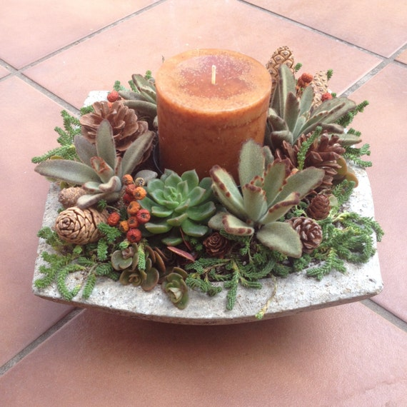 SUCCULENT CENTERPIECE Fall Arrangement Thanksgiving Holiday