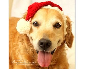 Santa Hat for Dogs, Dog Santa Hat, Holiday Dog Hat, Christmas Hat for Dogs, Large Breed Dog Hat, Christmas Dog Hat, Santa Dog Hat
