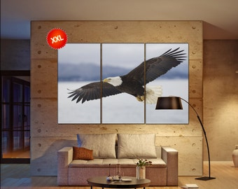 Eagle wall art print prints on canvas Alaskan Bald Eagle photo art work framed art artwork