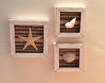 1:12th scale Starfish and shell pictures Set of 3