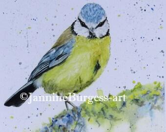 Bluetit, you looking at me? Original Watercolour Painting