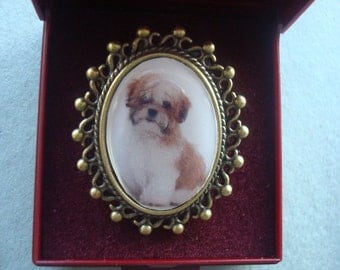 Shih Tzu, Choice of  Brooch, Earrings and bracelets