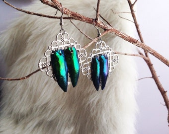 Jewel beetle earrings