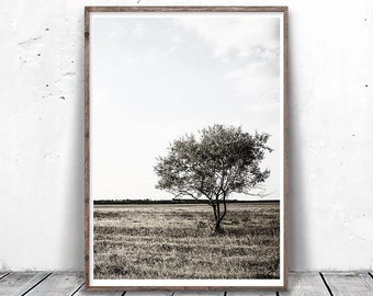 Tree Photography, Lone Tree Photo, Tree Silhouette, Minimal Tree Art, Modern Minimalist, Nature Photography, Landscape Photography