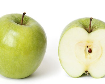 Apple Seeds - GRANNY SMITH - Crisp, Tart Fruit - Nutritional Snack - 10 Seeds