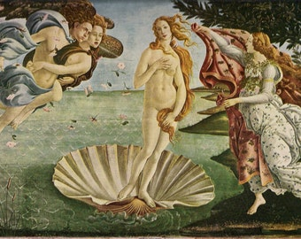 Botticelli - Venus Rising -  Beautiful art print - gift for artists - gift for art lovers - Italian Renaissance - Florence Art