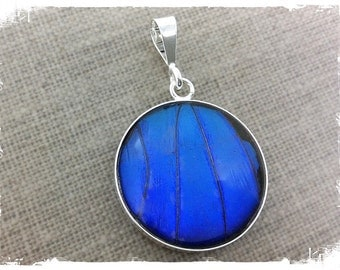 Real Butterfly Wing Jewelry, butterfly jewelry, Blue Morpho, butterfly wing pendant, Insect Jewelry, bug jewelry