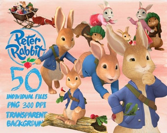 Petter Rabbit Clipart -PNG -transparent-300dpi-party-printable