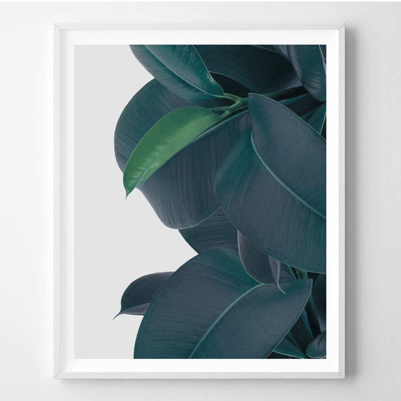 Tropical plant plant print minimal tropical leaf modern for Minimal art wall