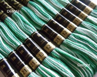 Anchor Thread 1213 Variegated 6 Strand Floss / Skeins