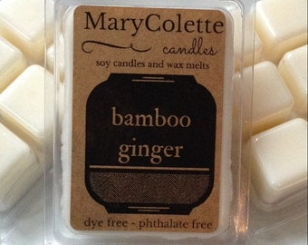 Bamboo Ginger Wax Melts | Eco Friendly Scented Wax Melt | Scented Soy Melts | Unique Wax Cubes | Soy Wax Tart