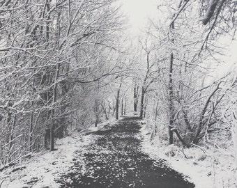 Snowy Path 8x8 Print