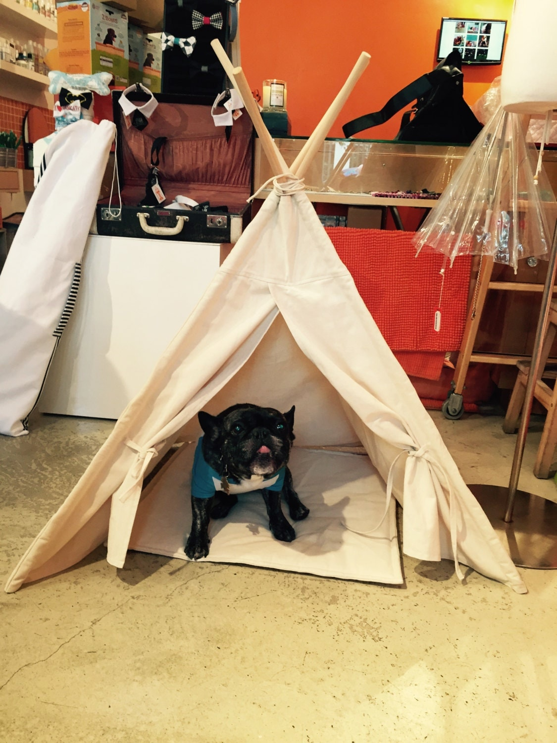 DOG teepee/ CAT TEEPEE Pet Tipi Tent Bed by