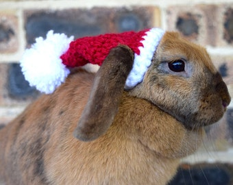 Santa hat for bunnies, pet rabbit Christmas hat, slouchy style, Christmas clothes for bunnies, pet rabbit Christmas hat, Christmas Santa hat
