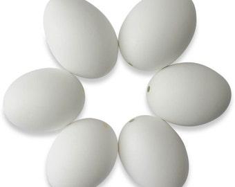 "2.5"" Set of 6 Blown Out Blank Duck Eggshells- SKU # bg-299-6set"
