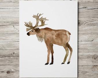 Elk print Animal art Nursery poster Wildlife print ACW459