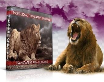 20 TRANSPARENT PNG Lions Animal Overlays, Photo Overlays, Photoshop Overlay, Photography Backgrounds, Digital Background, Digital Backdrop