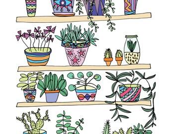 Plant Shelfie - Illustration Art Print - A4 Art Print - Plant Illustration