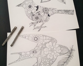 Birds, Sparrow - Adult Colouring Pages