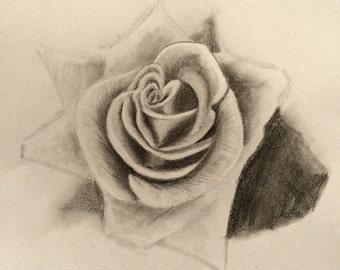Rose romantic, Graphitzeichnung, im Alurahmen