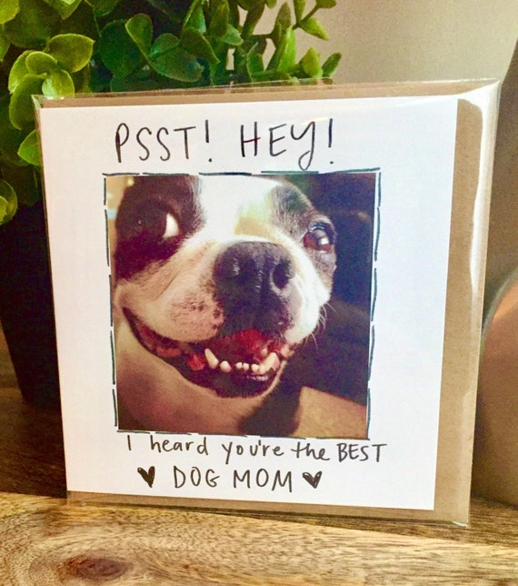 Funny Mothers Day, Mother's Day Card, #1 Mom, Mother's Day Card Funny, Dog mom, Boston Terrier, Dog mom cards, Mother's Day card from Dog