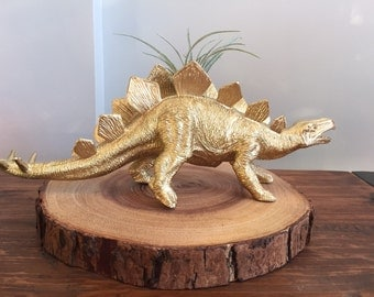 Large gold dinosaur planter with air plant; desk decor; air plant holder