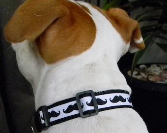 Black and White Mustache Print Collar