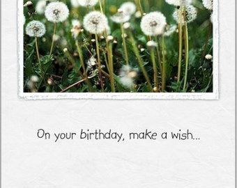 Birthday ~ Wishes