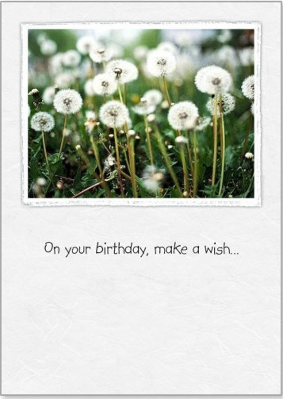 Birthday ~ Wishes