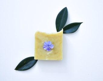 Eucalyptus Soap - Vegan Soap, Organic Soap, Cruelty Free Soap, All Natural Soap, Bar Soap, Cold Process Soap