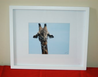 Framed giraffe photo taken in Serengeti National Park Tanzania Africa
