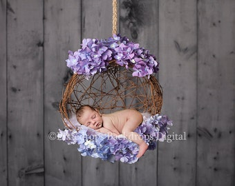 Digital Backdrops/Props (Hanging Newborn Digital Backdrop Hydrangea Flowers and Reclaimed Grey Barn Wood) Digital Download