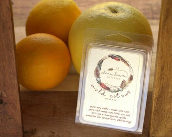 Wild Citrus Soy Wax Melts - Wax Melts with Essential Oils  - Wax Tarts - Soy Tarts - Home Fragrance - Aromatherapy - Natural Soy