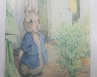 Peter rabbit cake topper edible print