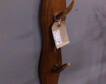 Vintage antler hooks