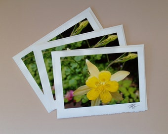 Photo Note Card #04