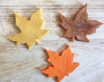 Fall Leaves Soap Set - Autumn Sale - Leaf Soap - Harvest Soap