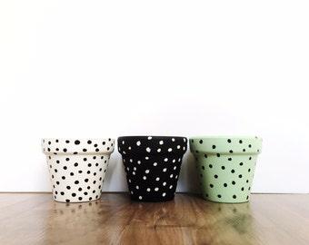 Mini Trio - Plant Pot - Painted Pot - Planter - Cactus Pot - Succulent Planter - Flower Pot - Terracotta - Polka Dots