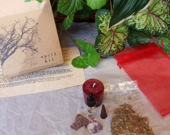 Wicca Wiccan Complete Weight Loss Mojo Gris-Gris/Putsi bag/spell kit