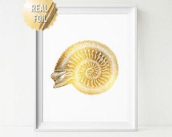Gold Seashell - Real Gold Foil Shell - Ammonite Seashell Print - Nautilus Shell Art Print - Natural History - Gold Spiral Seashells