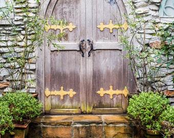 Arch Door Photography Backdrop Old Doors photo Background Newborns kids Distressed printing church door Background D-4294
