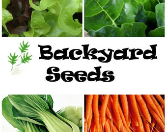 Organic Vegetable Seed 4 Pack: Pak Choi, Lettuce, Silverbeet, and Carrot