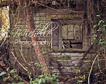Newborn/Senior/Children Outdoor Abandoned Barn Digital Background