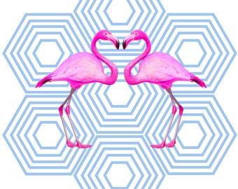 Flamingos & Shapes
