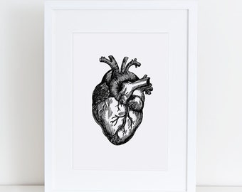 Heart Print, Vintage Human Heart, Human Anatomy, Heart Illustration, Printable Art,  print at home, digital download, vintage page, vintage