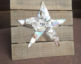 Starfish Seashell Wallart