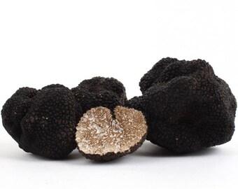 Fresh Black Truffles 4 ounce