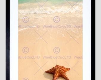 Photo Starfish Ocean Wave Tide Fine Art Print Poster Home Decor Picture FEBMP631B
