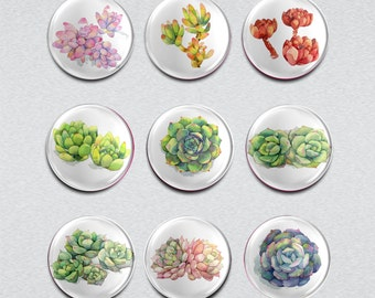 Succulent Plants 1 inch Badges/Magnets/Glass Cabochon Vintage pinback  buttons set of 9